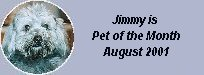 Bubino's pet of the month for August 2001