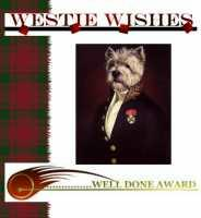 Westie wishes well done award